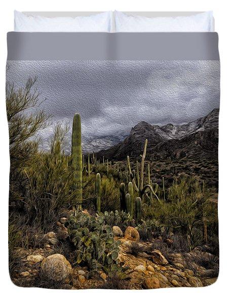 Sonoran Winter No.3 Duvet Cover