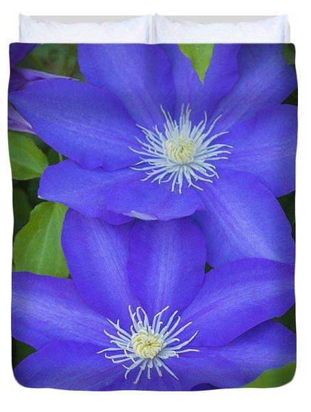 South Carolina Color Duvet Cover