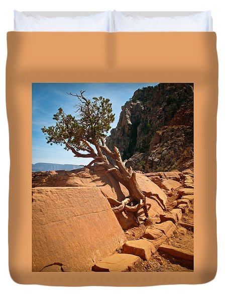 South Rim Kalib Trail Duvet Cover by Kathleen Scanlan
