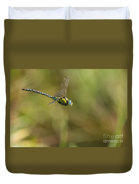 Duvet Cover featuring the photograph Southern Blue Hawker Male by Jivko Nakev