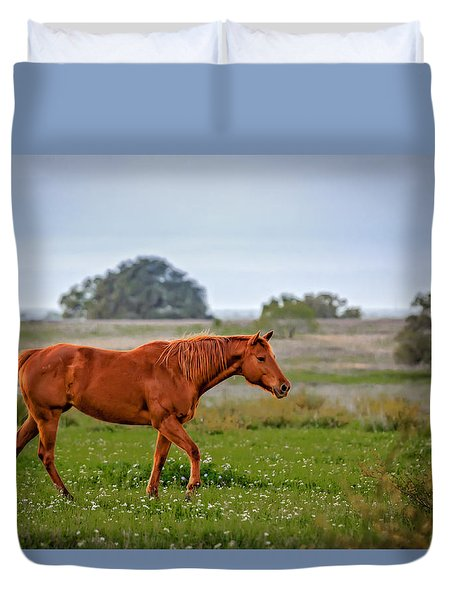 Duvet Cover featuring the photograph Southern Field by Melinda Ledsome
