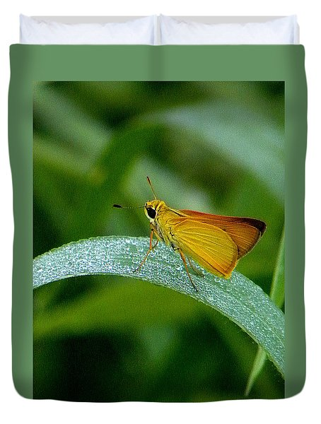 Southern Skipperling Butterfly  000 Duvet Cover