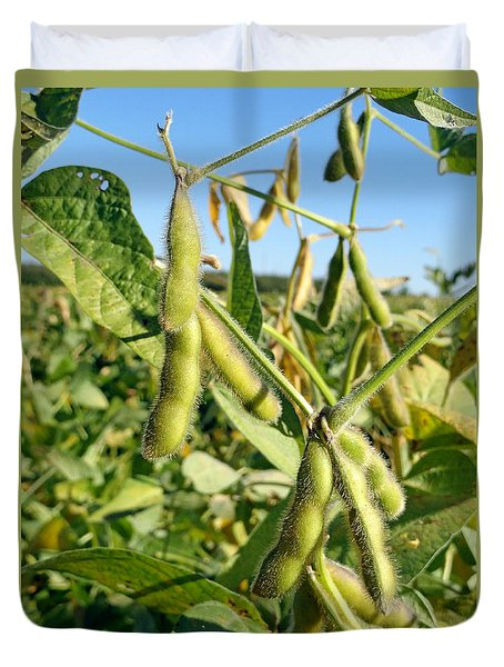 Soybeans In Autumn Duvet Cover