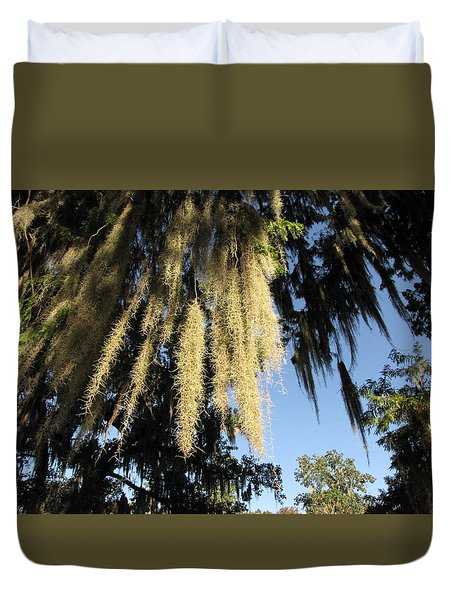 Spanish Moss Canopy Duvet Cover by Martha Ayotte
