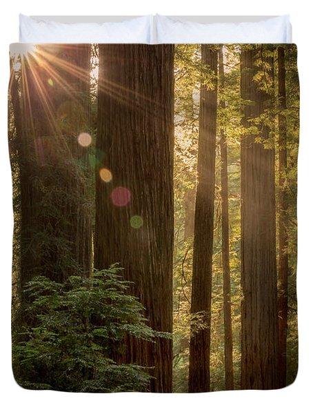 Sparkle In The Redwoods Duvet Cover