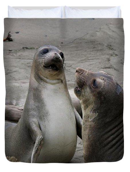Sparring Seals  Duvet Cover