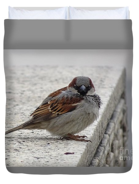Duvet Cover featuring the photograph Sparrow by Angela DeFrias