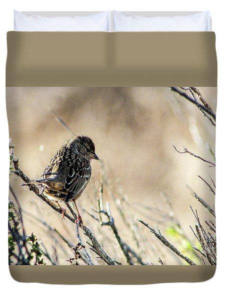 Snarky Sparrow Duvet Cover