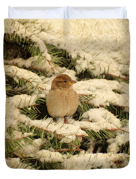 Duvet Cover featuring the photograph Sparrow In Winter II - Textured by Angie Tirado