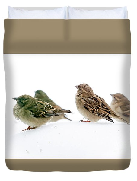 Sparrows In The Snow Duvet Cover by Eleanor Abramson