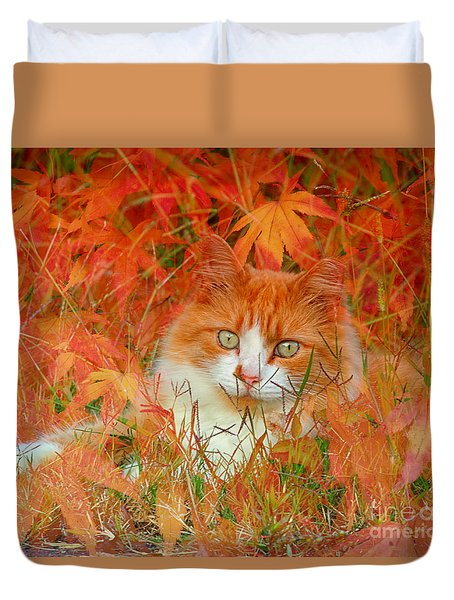 Special Kitty Duvet Cover