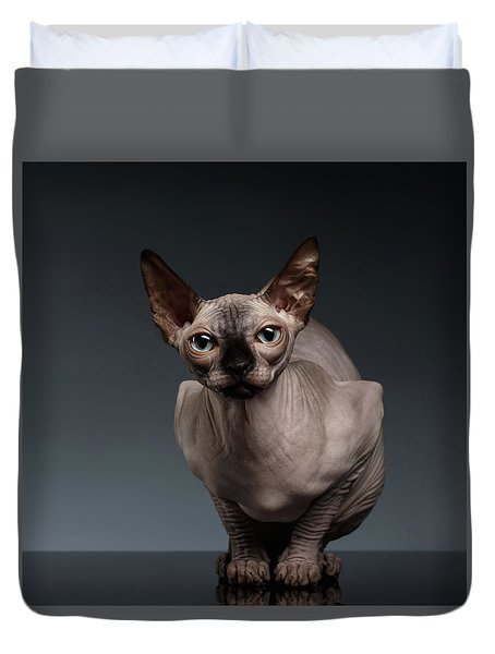 Sphynx Cat Sits In Front View On Black  Duvet Cover