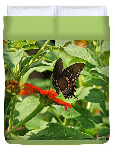 Spicebush Swallowtail Duvet Cover by Sandy Keeton