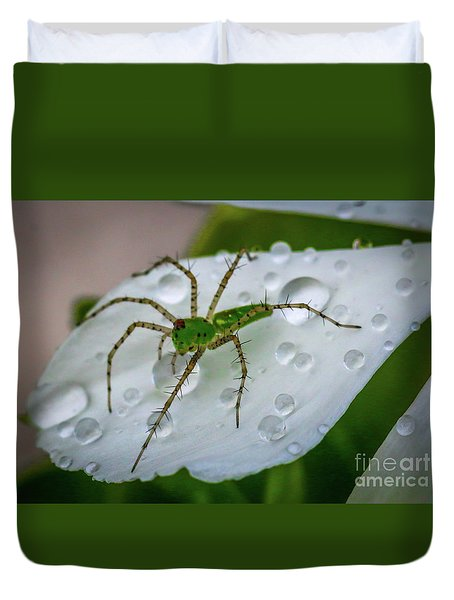 Spider And Flower Petal Duvet Cover