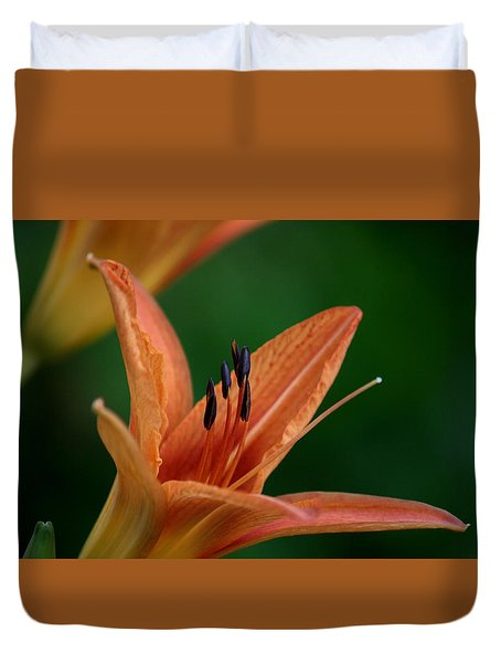 Spider Lily 2 Duvet Cover by Cathy Harper