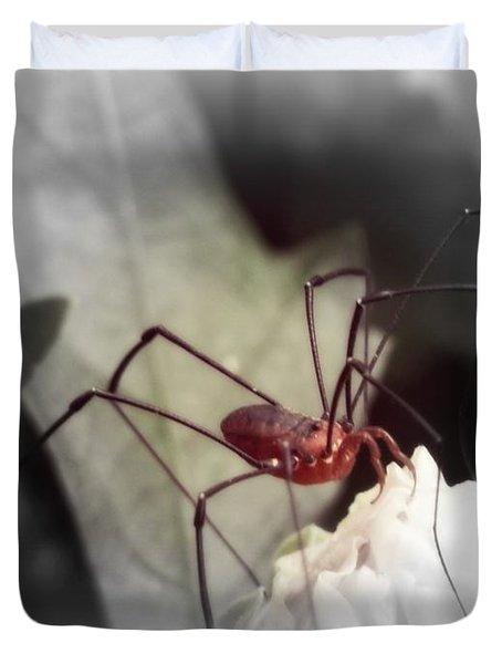 Spider On A Flower Duvet Cover