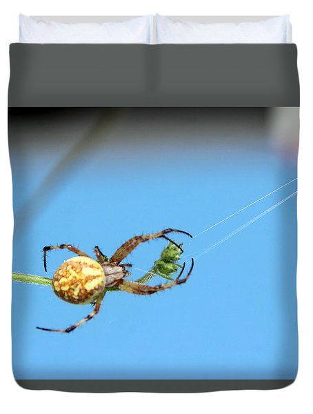 Spinning The Web Duvet Cover by Charles Ables