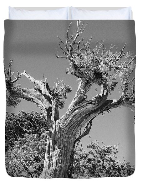 Duvet Cover featuring the photograph Spirit Tree by Maggy Marsh