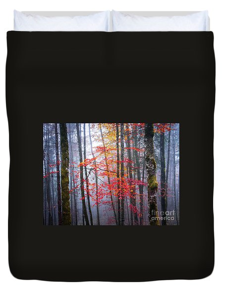 Duvet Cover featuring the photograph Splash Of Colour by Elena Elisseeva