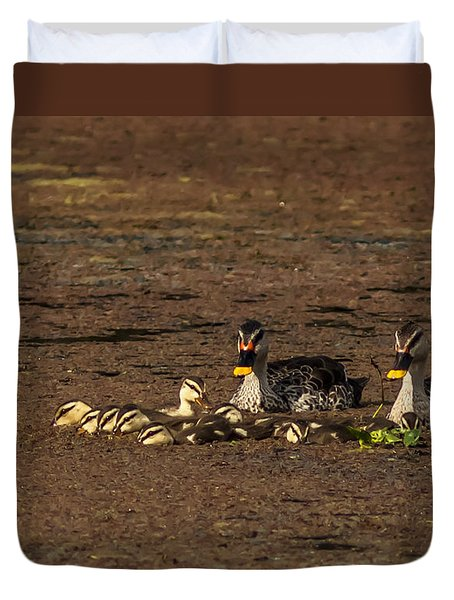 Spot Billed Duck Family  Duvet Cover by Ramabhadran Thirupattur