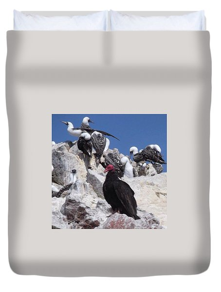 Turkey Vulture Duvet Cover