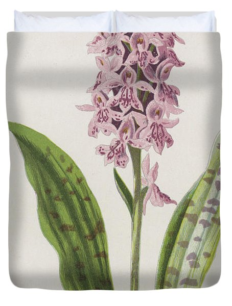 Spotted Orchis Duvet Cover