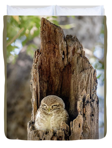 Spotted Owlet Duvet Cover