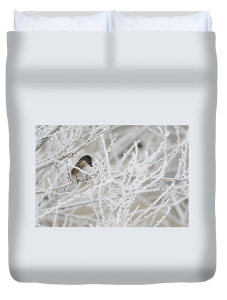 Spotted Towhee In Winter Duvet Cover