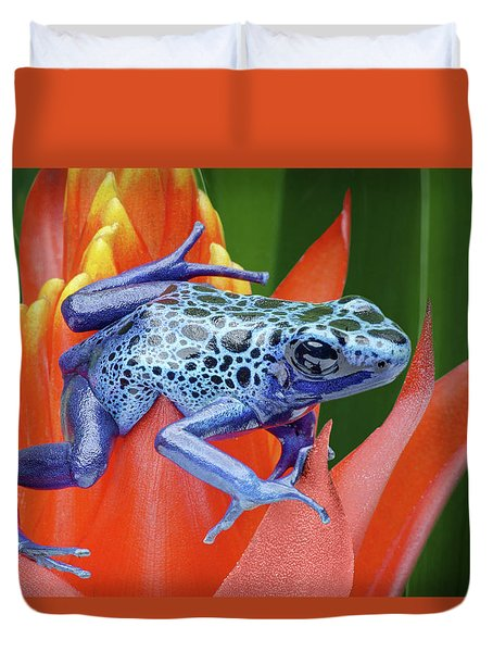 Duvet Cover featuring the photograph Sprawled - Poison Dart Frog by Nikolyn McDonald