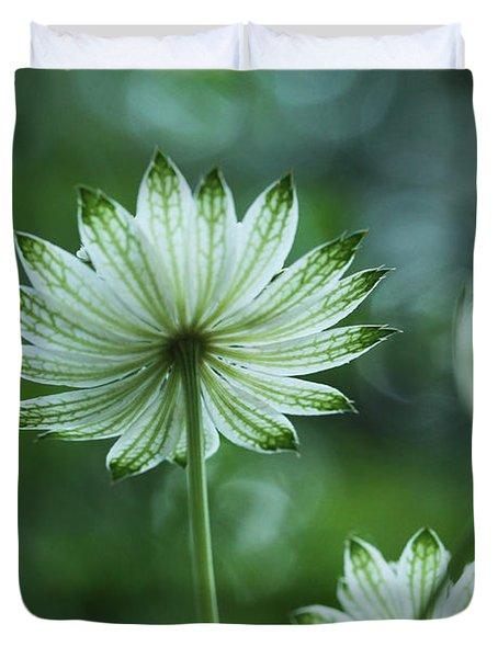 Botanica .. Spray Of Light Duvet Cover