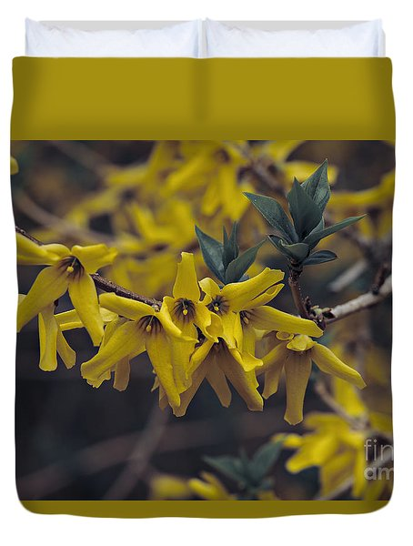 Duvet Cover featuring the photograph Spring 2016 8 by Cendrine Marrouat