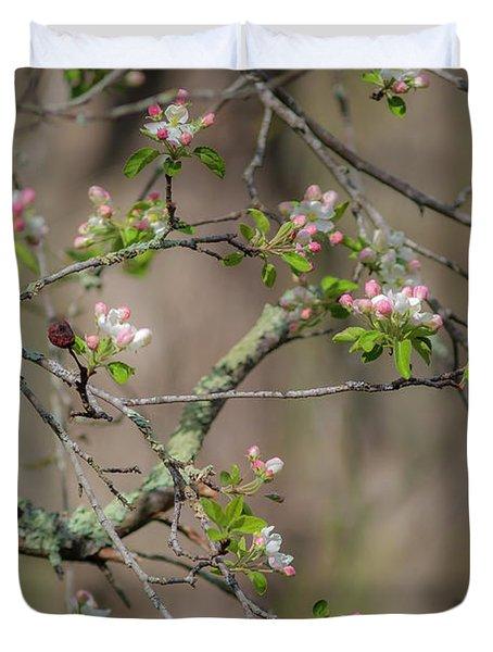 Spring Blossoms 2 Duvet Cover