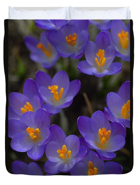 Spring Charmers Duvet Cover by Tim Good