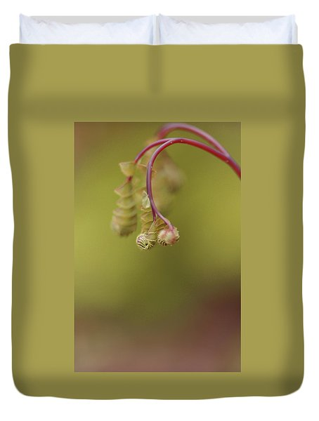 Duvet Cover featuring the photograph Spring Coming 2017 by Jeff Burgess