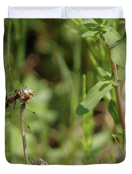 Duvet Cover featuring the photograph Spring Dragonfly by LeeAnn McLaneGoetz McLaneGoetzStudioLLCcom