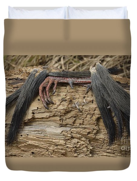 Spring Feathers Duvet Cover by Randy Bodkins