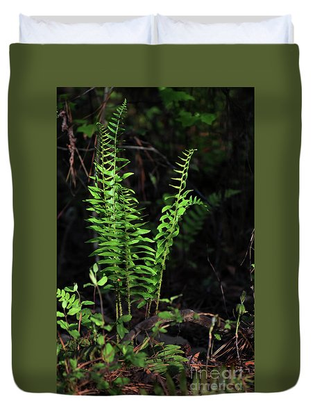 Duvet Cover featuring the photograph Spring Ferns by Skip Willits