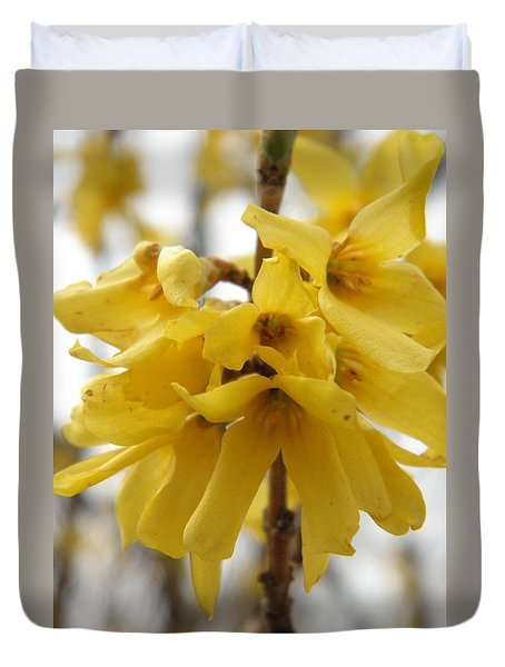 Spring Forsythia Blossoms Duvet Cover by Angie Runyan
