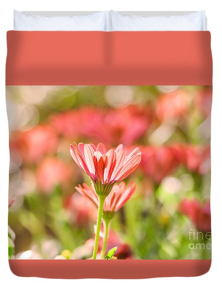 Spring Has Sprung In Pink Duvet Cover by Ruth Jolly