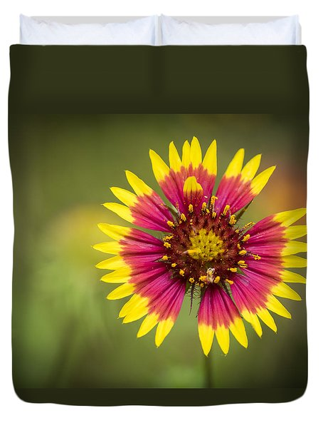 Spring Indian Blanket Duvet Cover