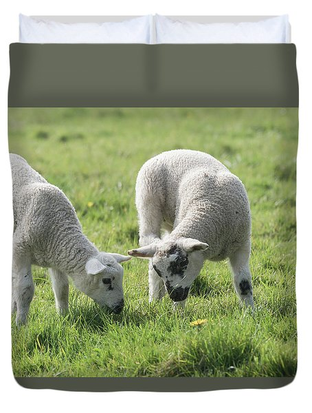 Duvet Cover featuring the photograph Spring Lambs by Scott Carruthers