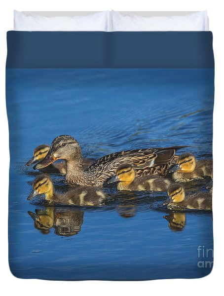 Duvet Cover featuring the photograph Spring Mallards by Mitch Shindelbower