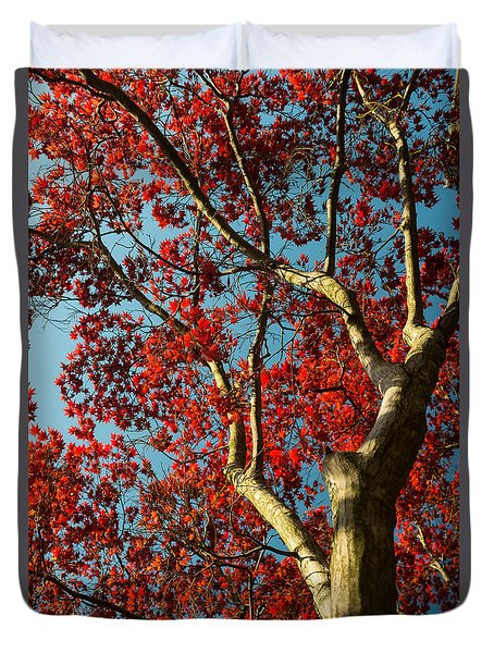 Spring Maple Duvet Cover