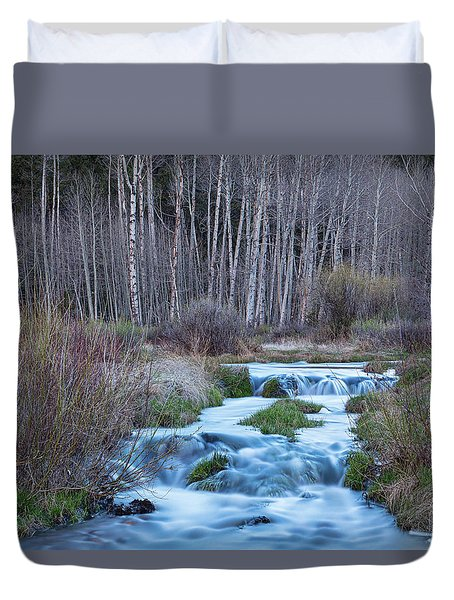 Spring Melt Off Flowing Down From Bonanza Duvet Cover by James BO Insogna
