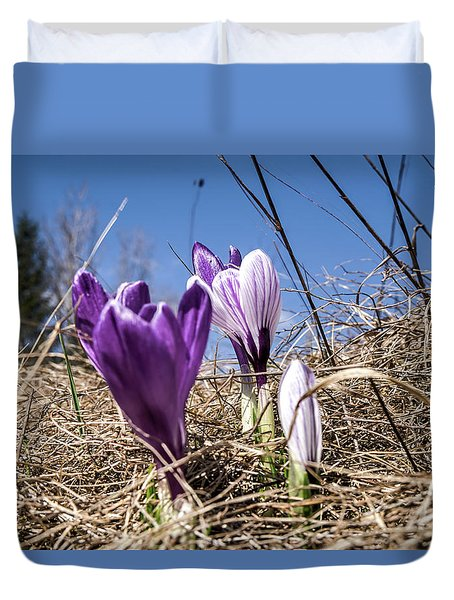 Spring On Bule Duvet Cover