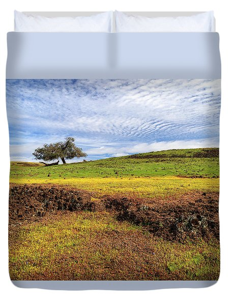 Spring On North Table Mountain Duvet Cover by James Eddy
