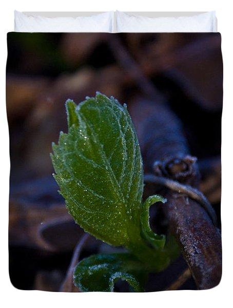 Spring Peeps Forth Duvet Cover