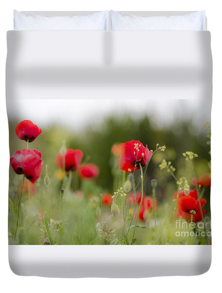 Spring Poppies  Duvet Cover