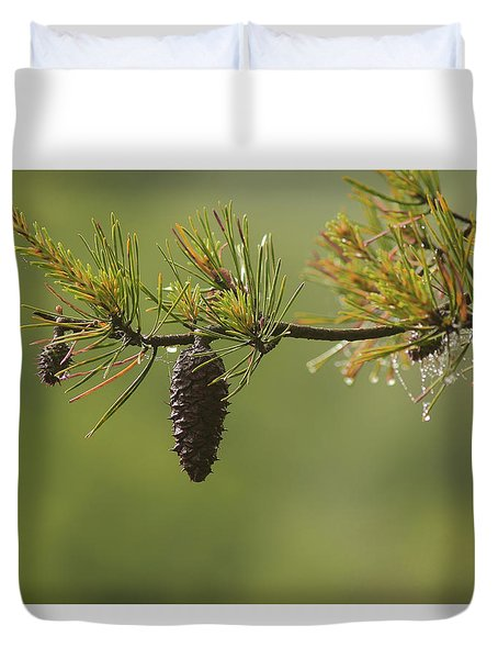Spring Rain And Pinecone Duvet Cover by Michael Eingle