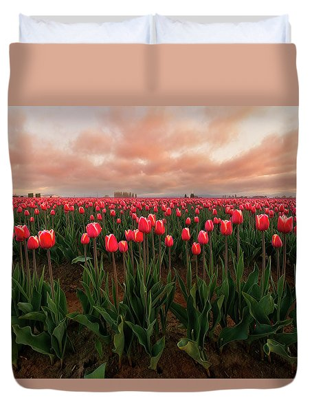 Spring Rainbow Duvet Cover by Ryan Manuel